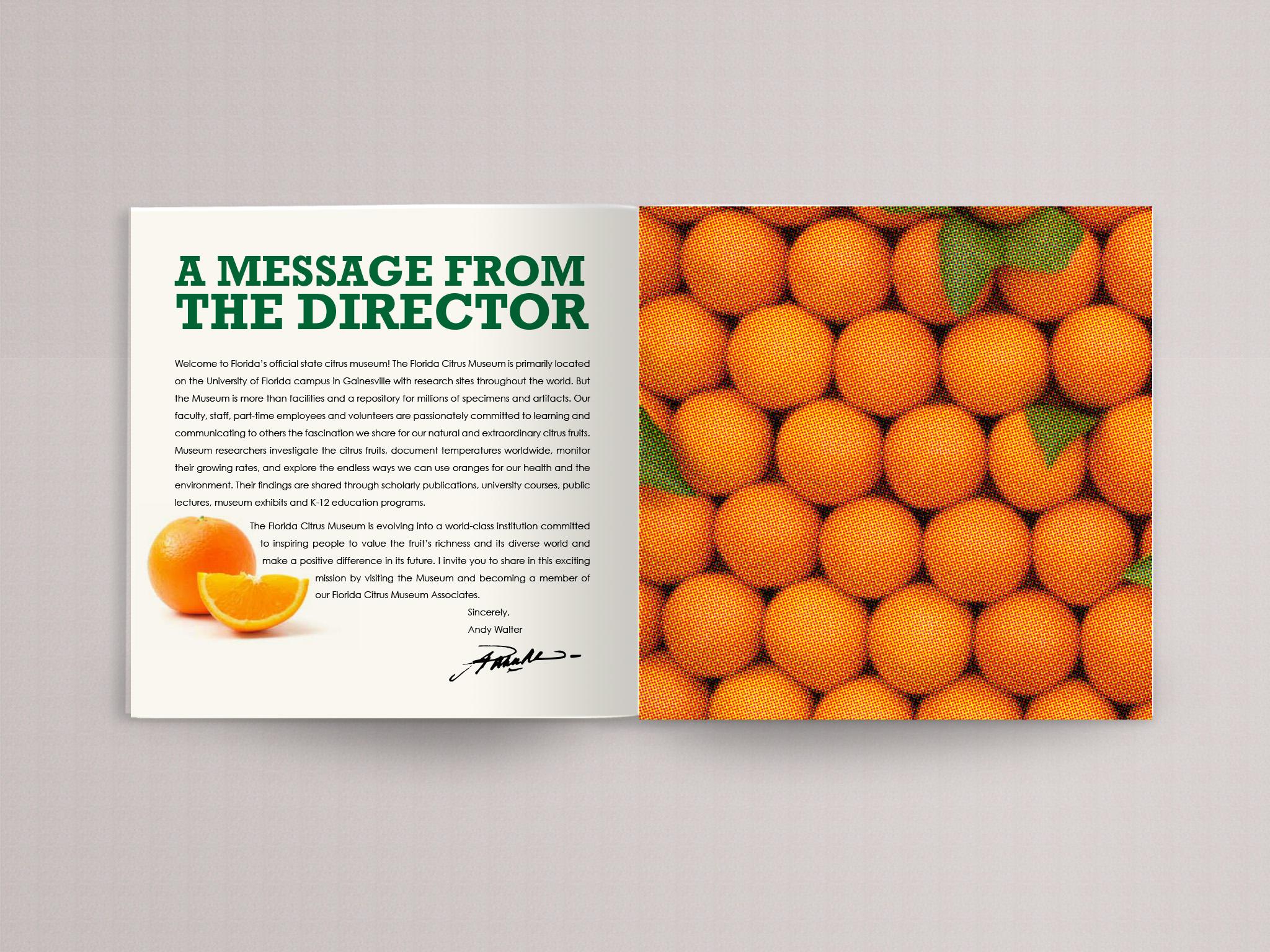 orange book page 2.jpg