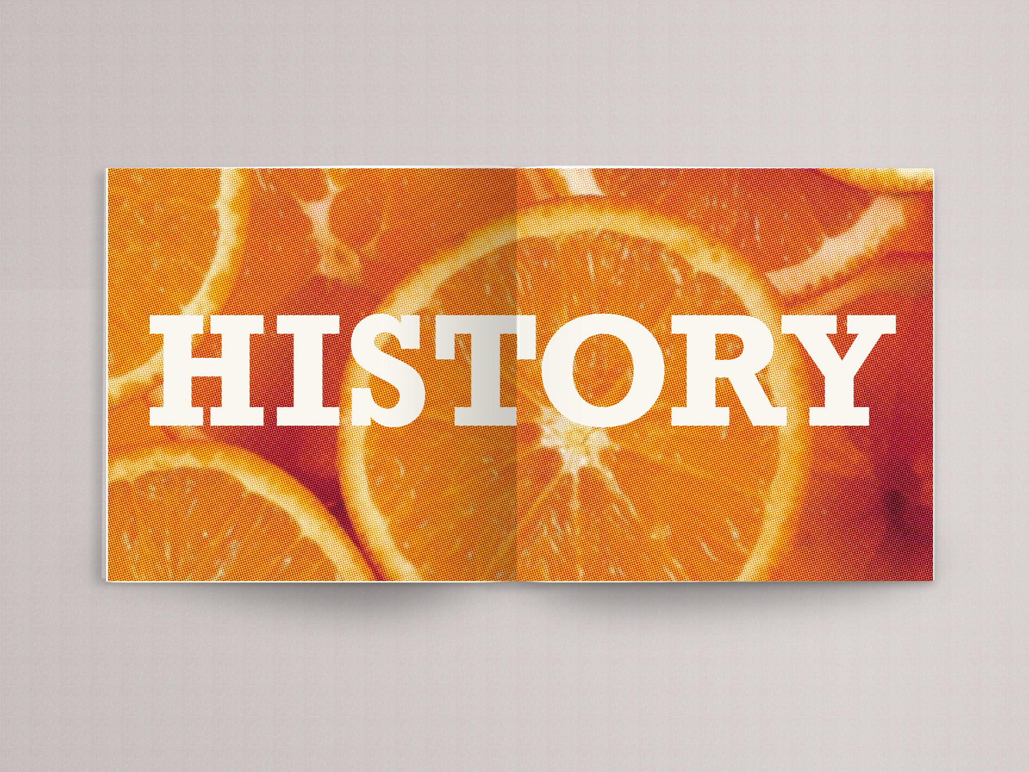 orange book page 3.jpg