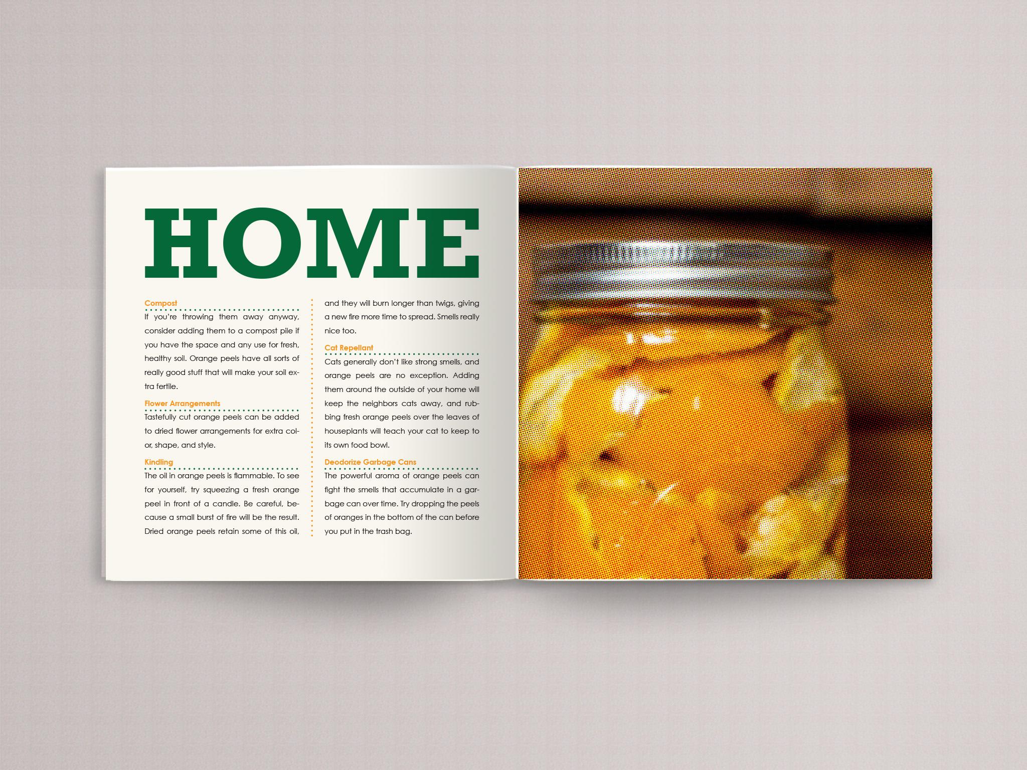 orange book page 17.jpg