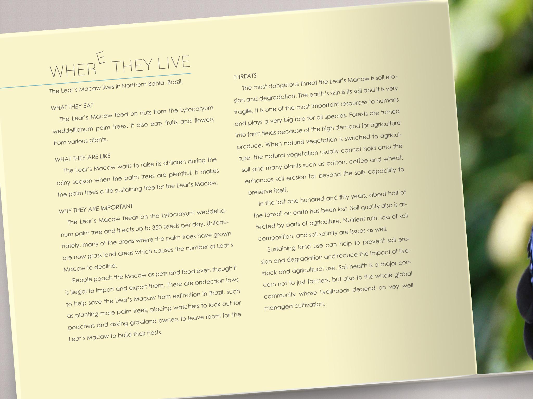 volans page 19.jpg