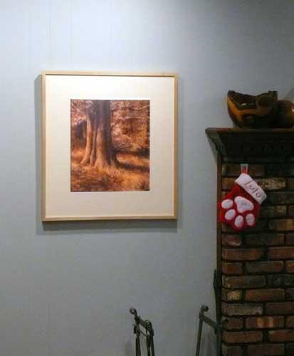 Enchanted : framed