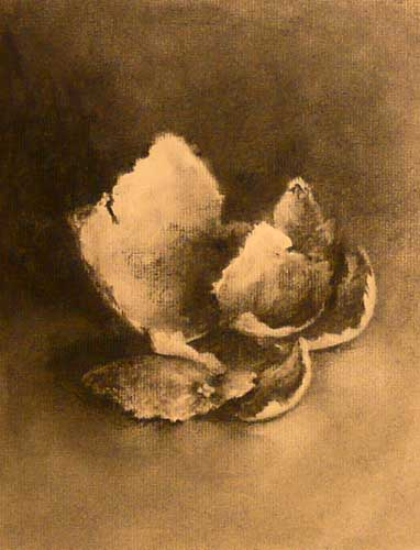 charcoal still life drawing of clementine ppel