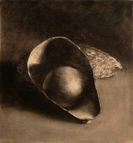 avocado charcoal still life drawing