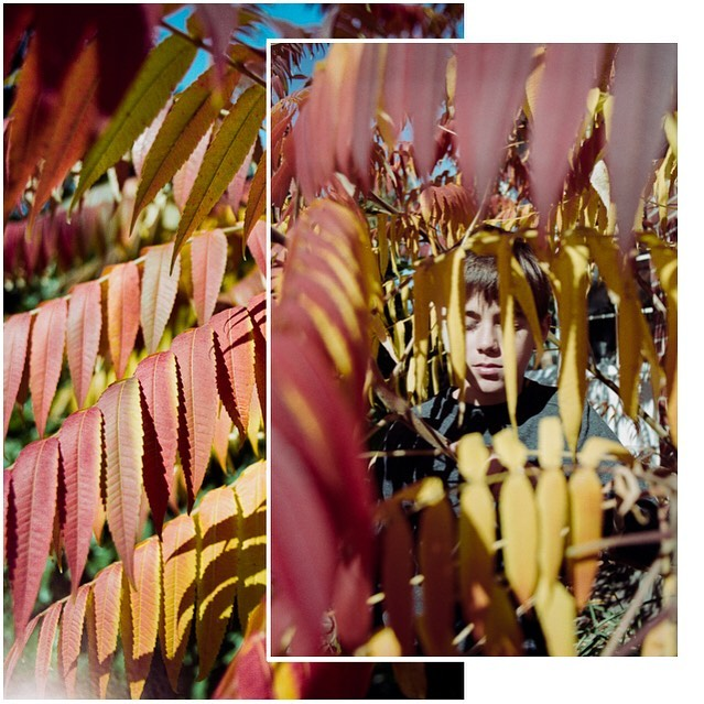 This is 12 💛 Happy Birthday @speedymisterm 🎂  We ❤️ You  #makepotraits#thisis12  #ishootfilm#filmmama#sheshootsfilm#childhoodonfilm#kodakfilm#filmisnotdead#shootitwithfilm#everydayfilm#analogphotography#madewithkodak#35mmfilm#grainisgood#kodakmoment#filmshooter#dearphotographer#illuminateclasses#letthekidsfilm#thefamilynarrative#epicfilmproject#filmeveryday#filmobsessed#filmobsessedclub#clickpro#thelesstravelledroads#montrealphotographer#womenwhoshootfilm#filmfollowfriday#mtlphotographer