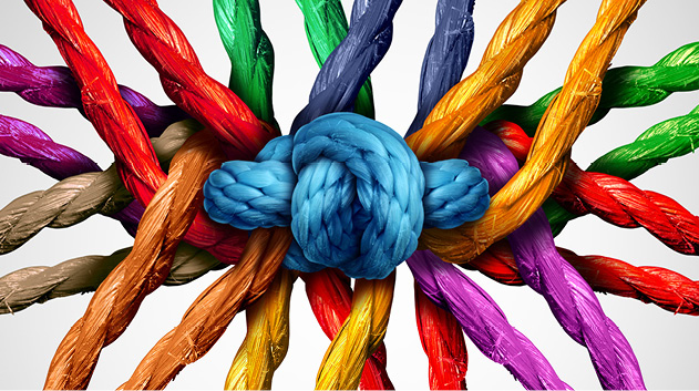 diversity knot of colors.jpg
