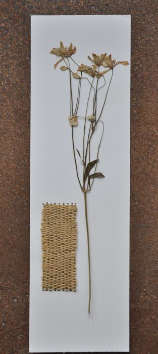 market flowers & mini-weaving.