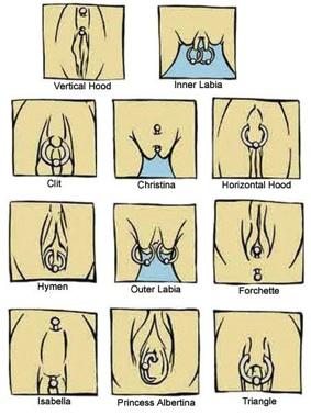 Vagina101.jpg