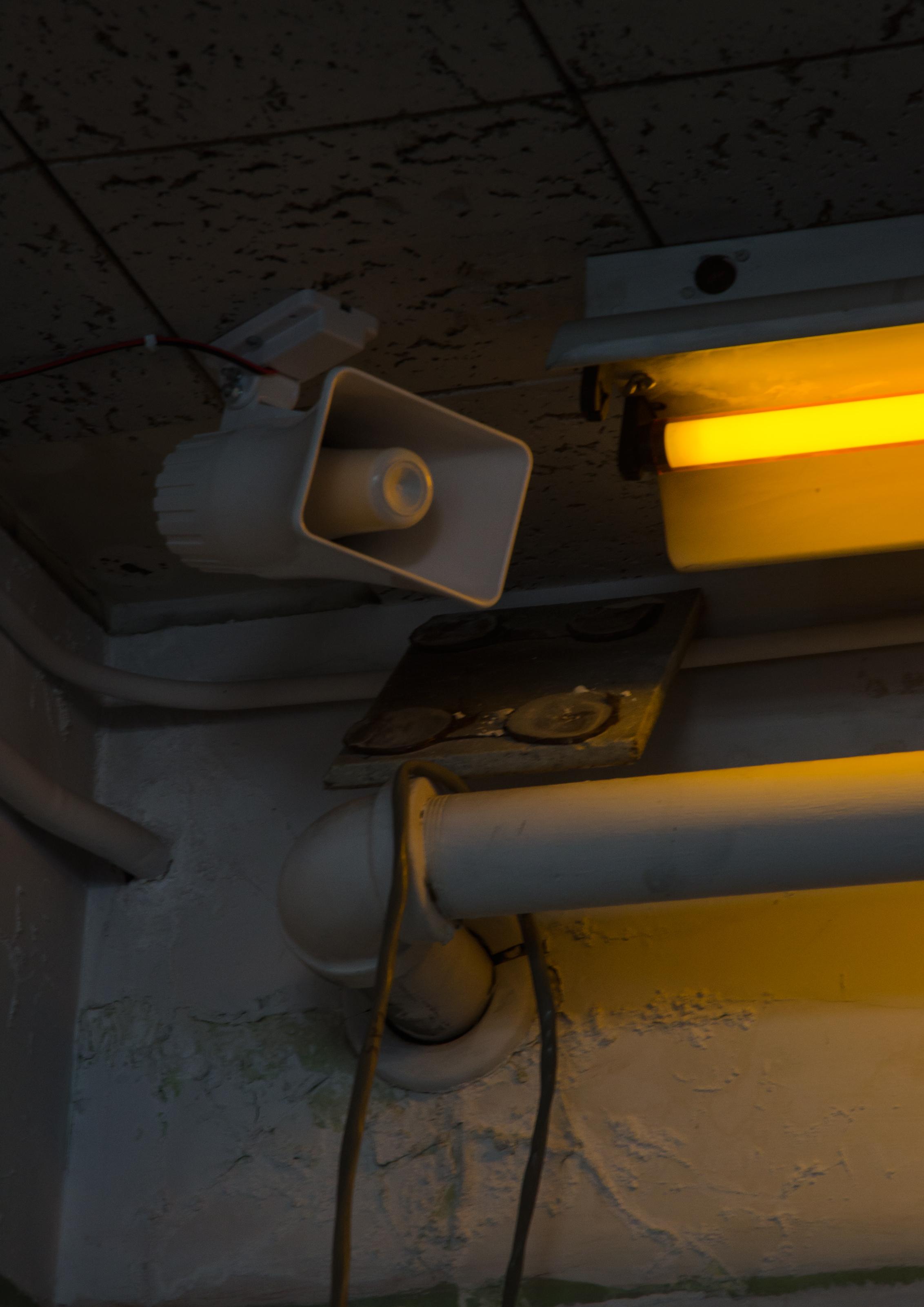 yellow-light-speaker-1.jpg