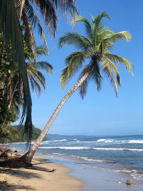 Playa Arricefe