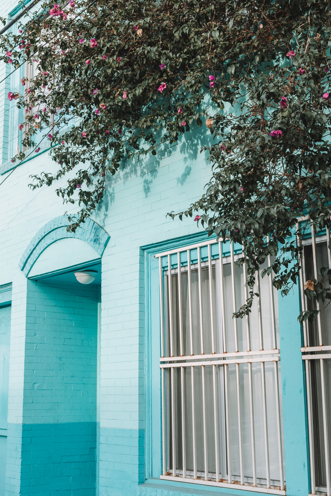 Turquoise Building Palm Leaves Venice Beach Photography / Canon 5D Mark IV / kelly creative