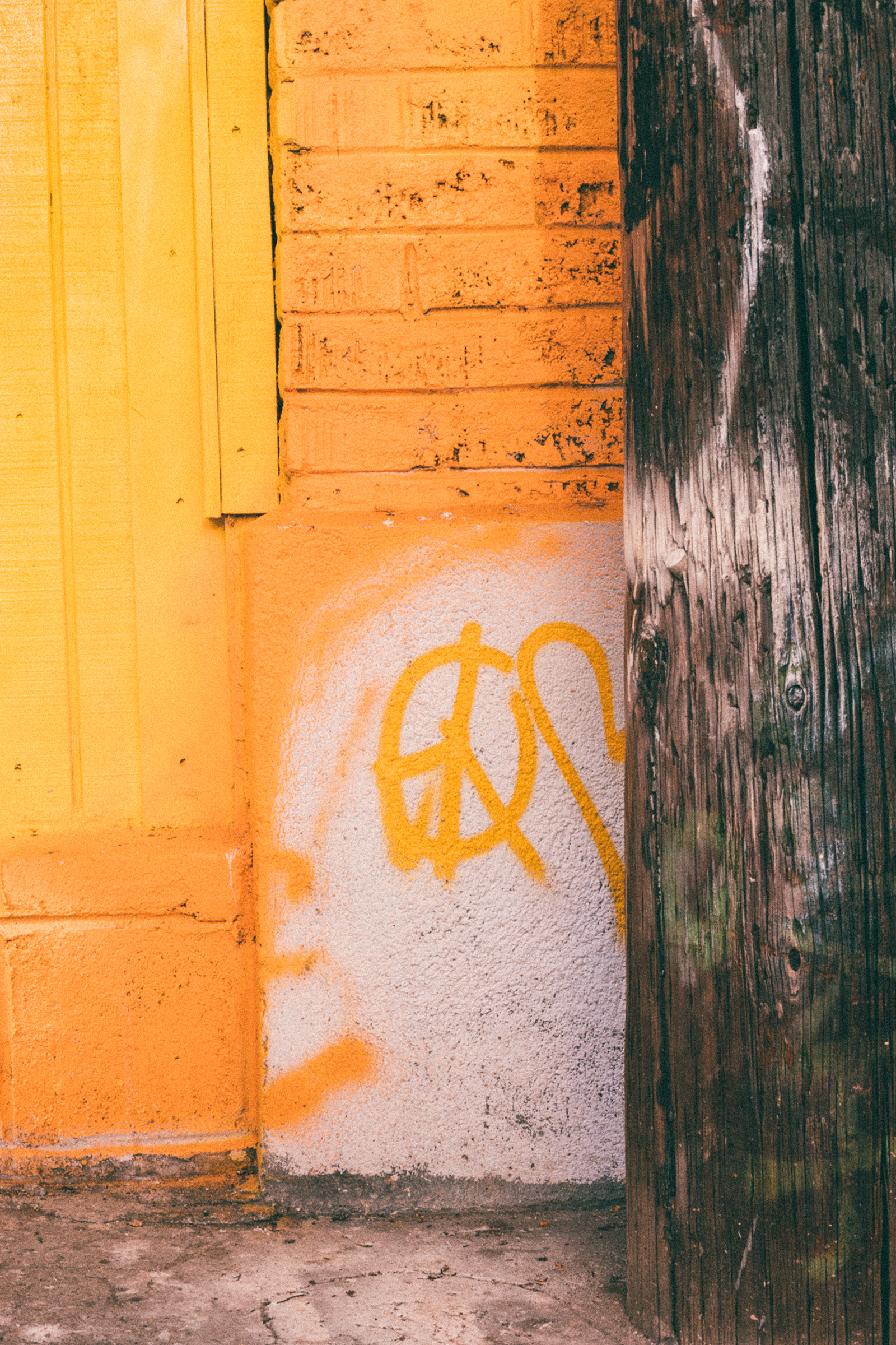 Yellow Color Inspo / Peace & Love / Photography Ideas / Kelly Fiance Creative