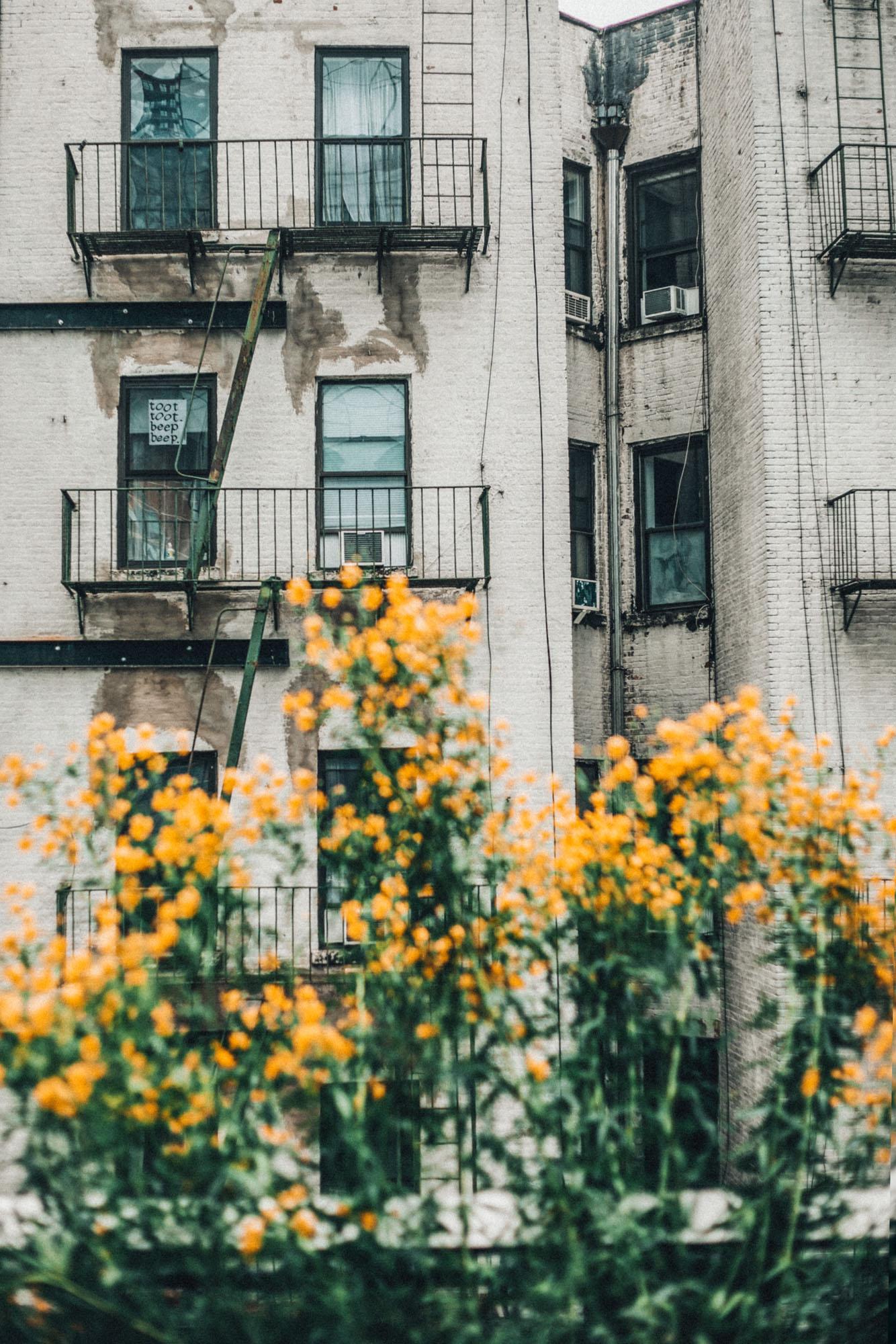 new-york-city-photography-travel-kelly-fiance-2.jpg