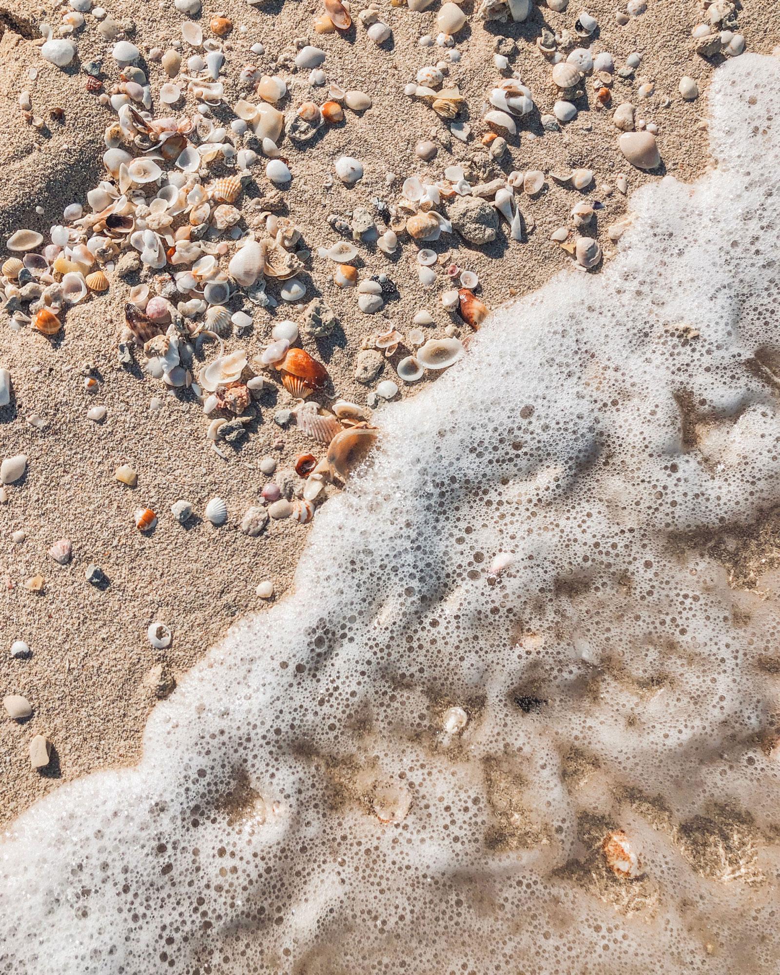 Seashell Sand Beach Travel Photography / Dubai Travel Tips