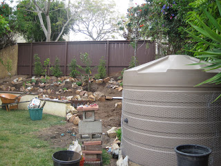 This 1320 gallon Bushman tank overflows onto the hillside which was reworked to hold rainwater flowing on it into basins around the fruit trees.