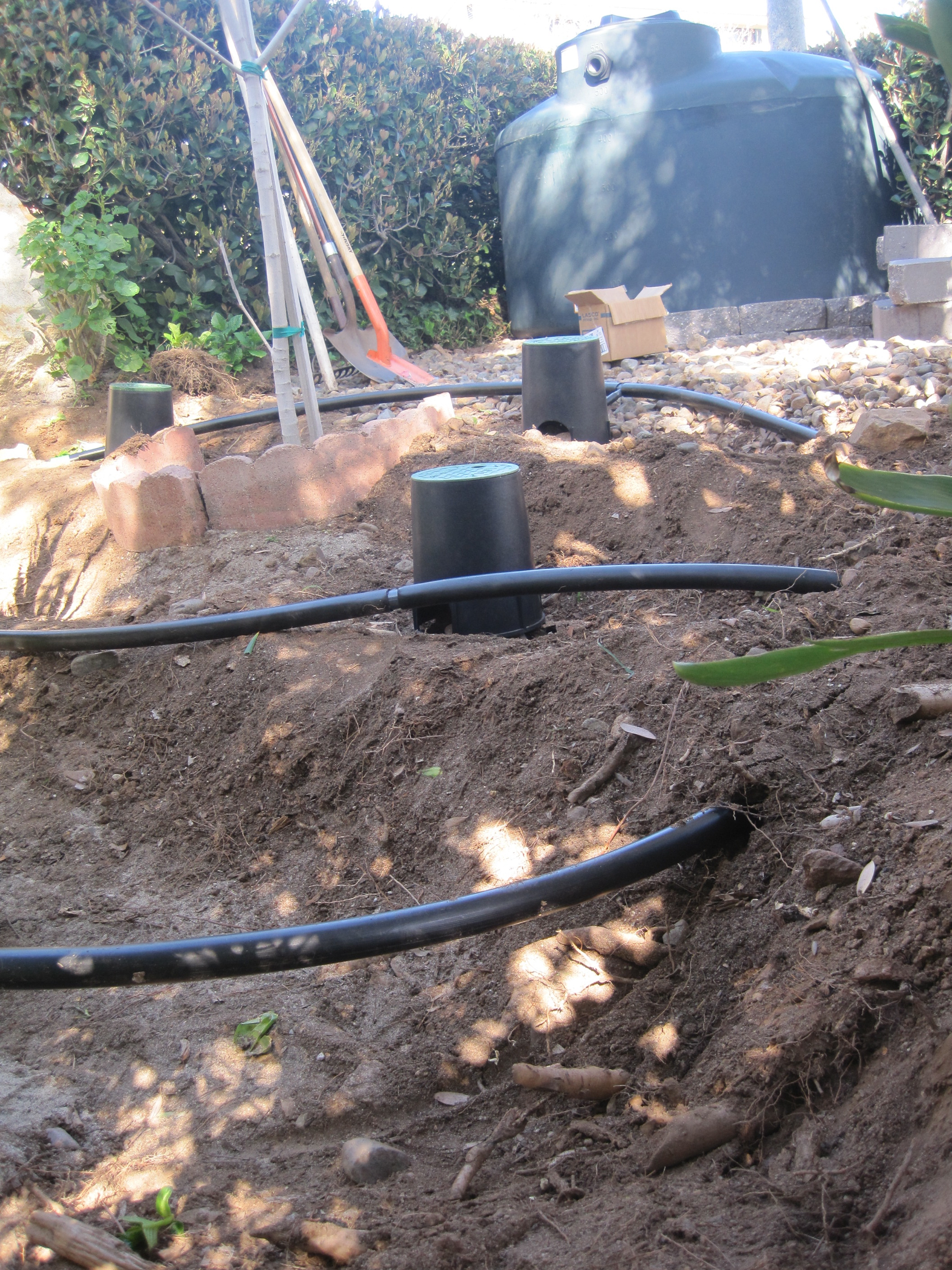 A 500 gallon tank integrated with laundry greywater