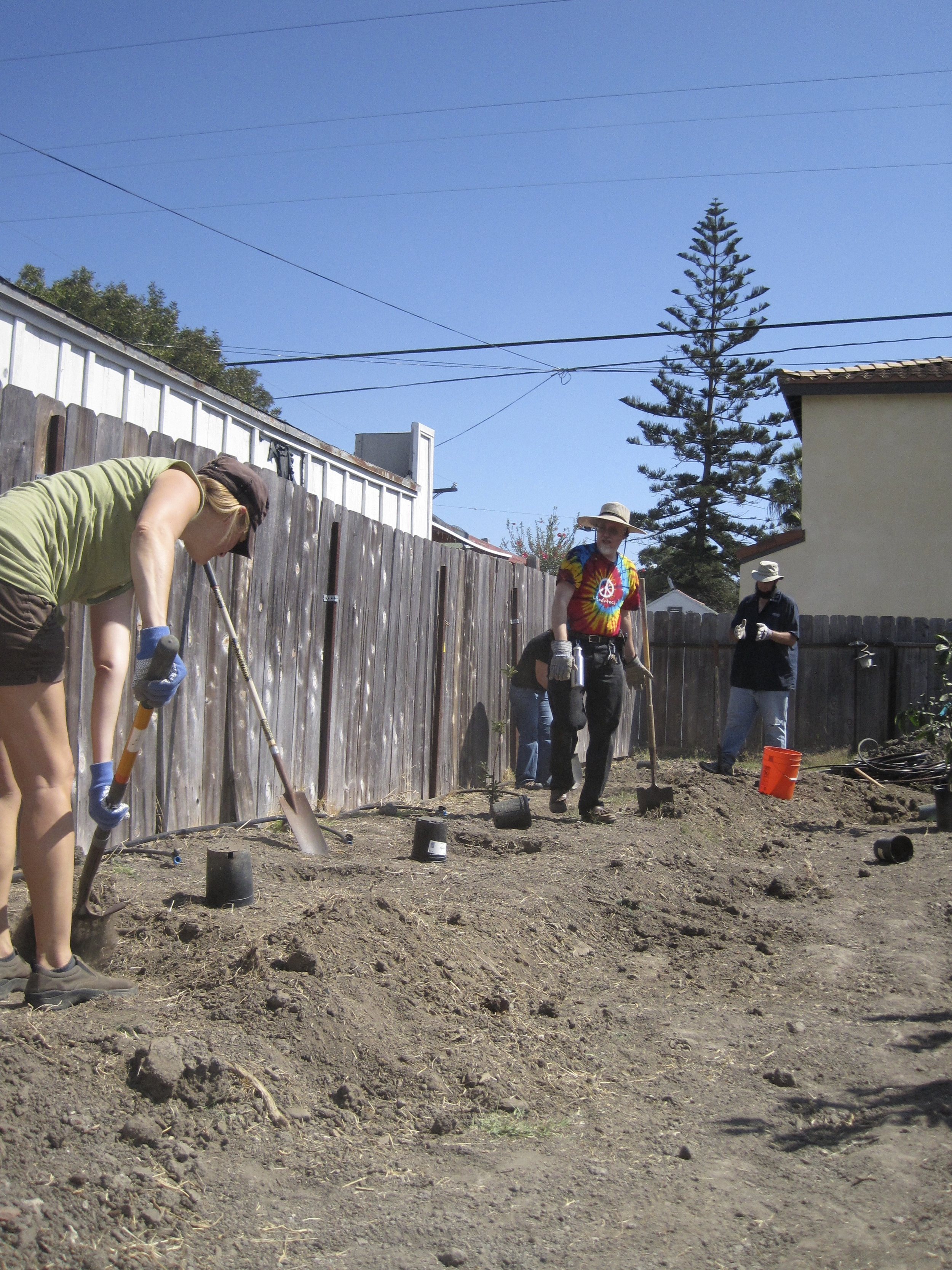 This space was empty when we started.  After our workshop 6 trees were planted and abundance was created!