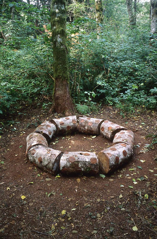 wood-sculpture-installation-nemeton-sculptor-tom-gormally.jpg