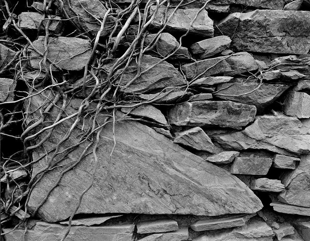 09_abandonedcottage_fanadpenninsula.jpg