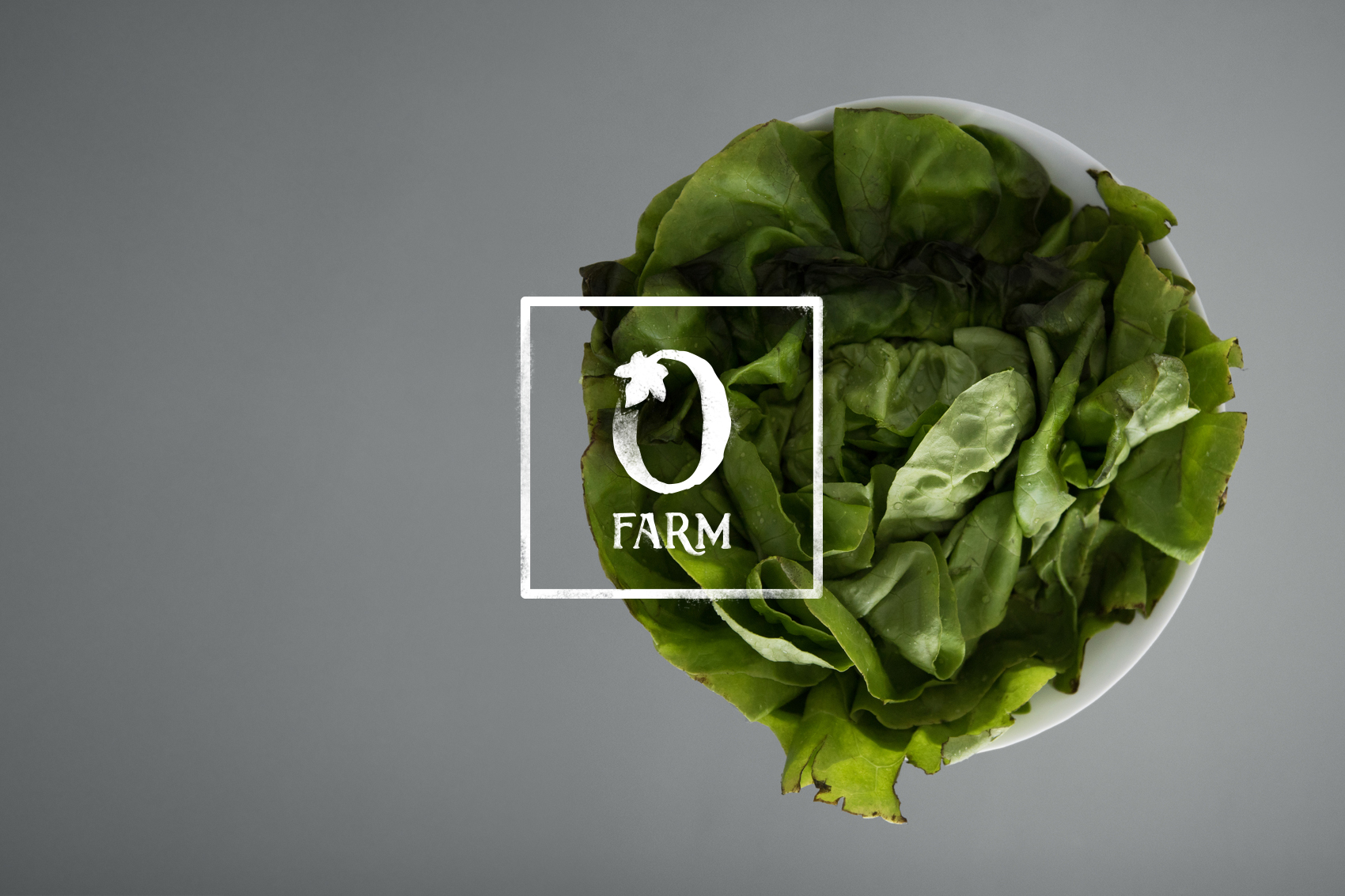 "Textured icon for Olivette Farm ""O"" leaf in white over a photo of a bowl of greens."