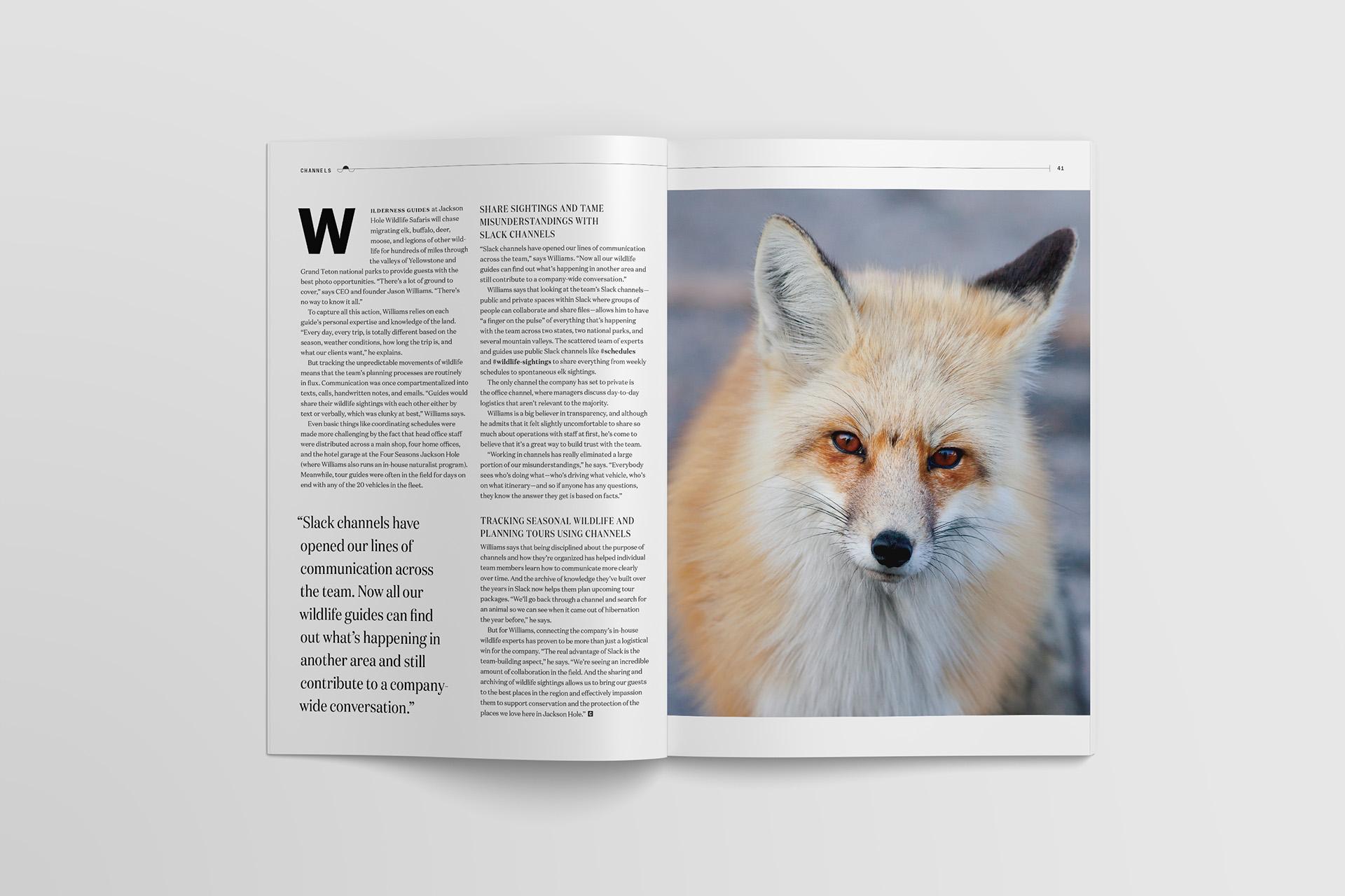 Slack Channels Wildlife Sightings Photo Essay 02