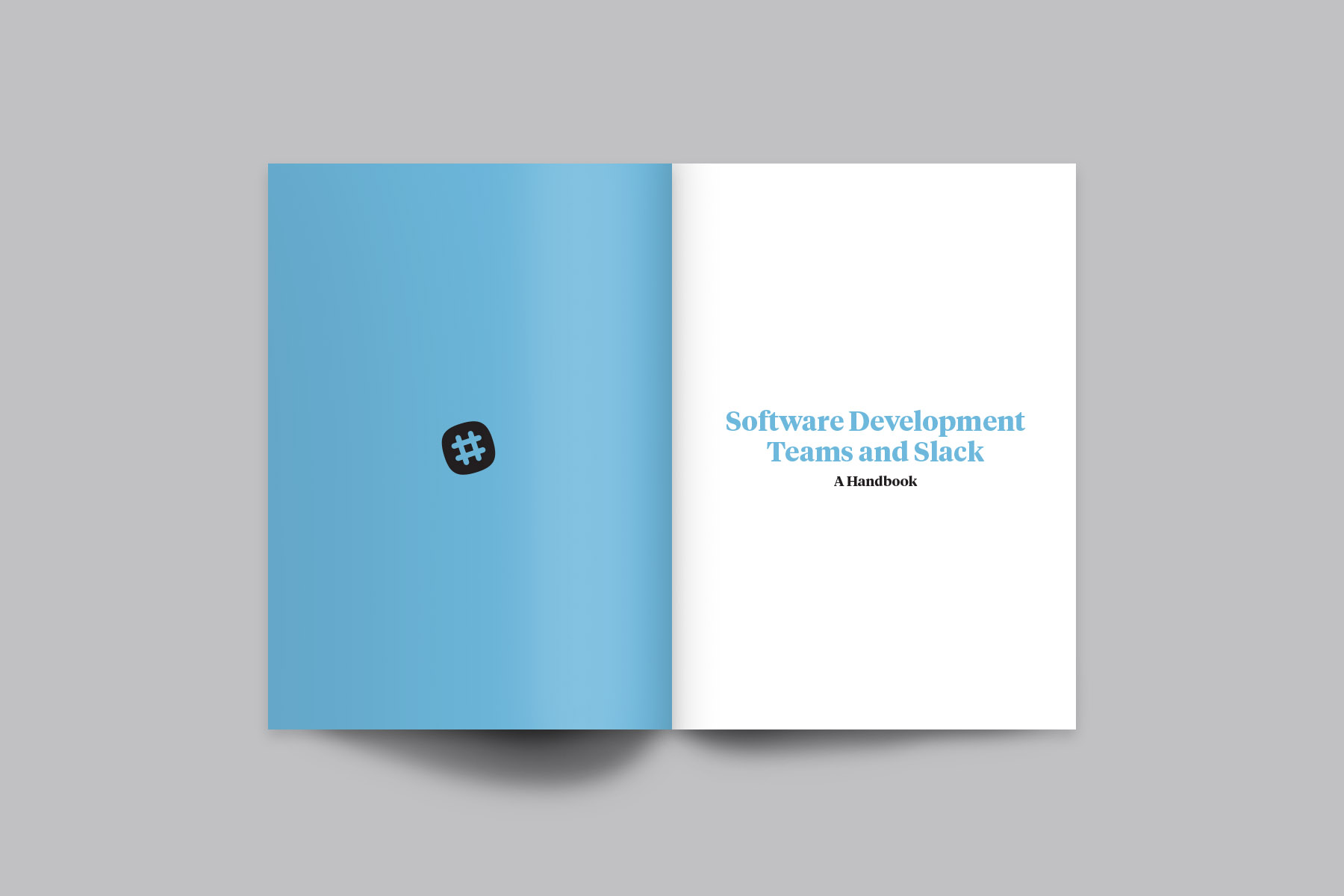 software-dev_mockup-01.jpg
