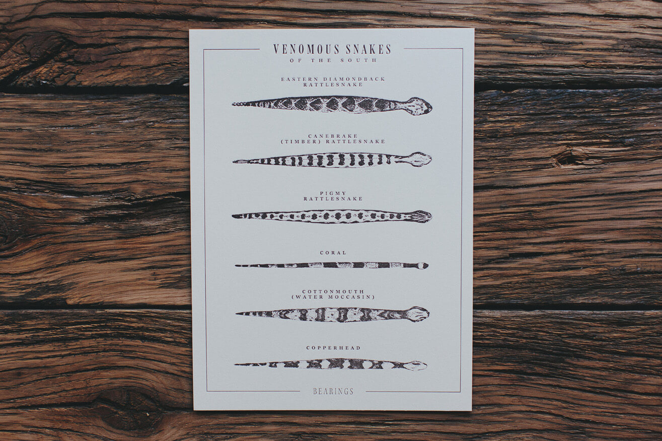 Illustrated infographic of types of venomous snakes of the south shows the eastern diamondback rattlesnake, canebrake timber rattlesnake, pigmy rattlesnake, coral snake, cottonmouth water moccasin, and copperhead, created and drawn by graphic artist Russell Shaw for Bearings Guide.