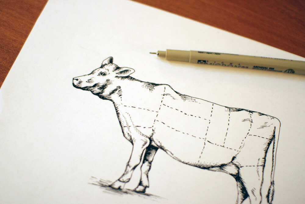 The original sketch of the cow diagram for the beef chart cuts of meat for Bearings Guide's series of letterpress infographics.