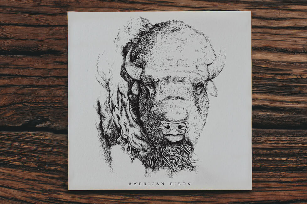 Detailed pen and ink hand drawn illustration of an american bison head on a fine art letterpress print and poster design.