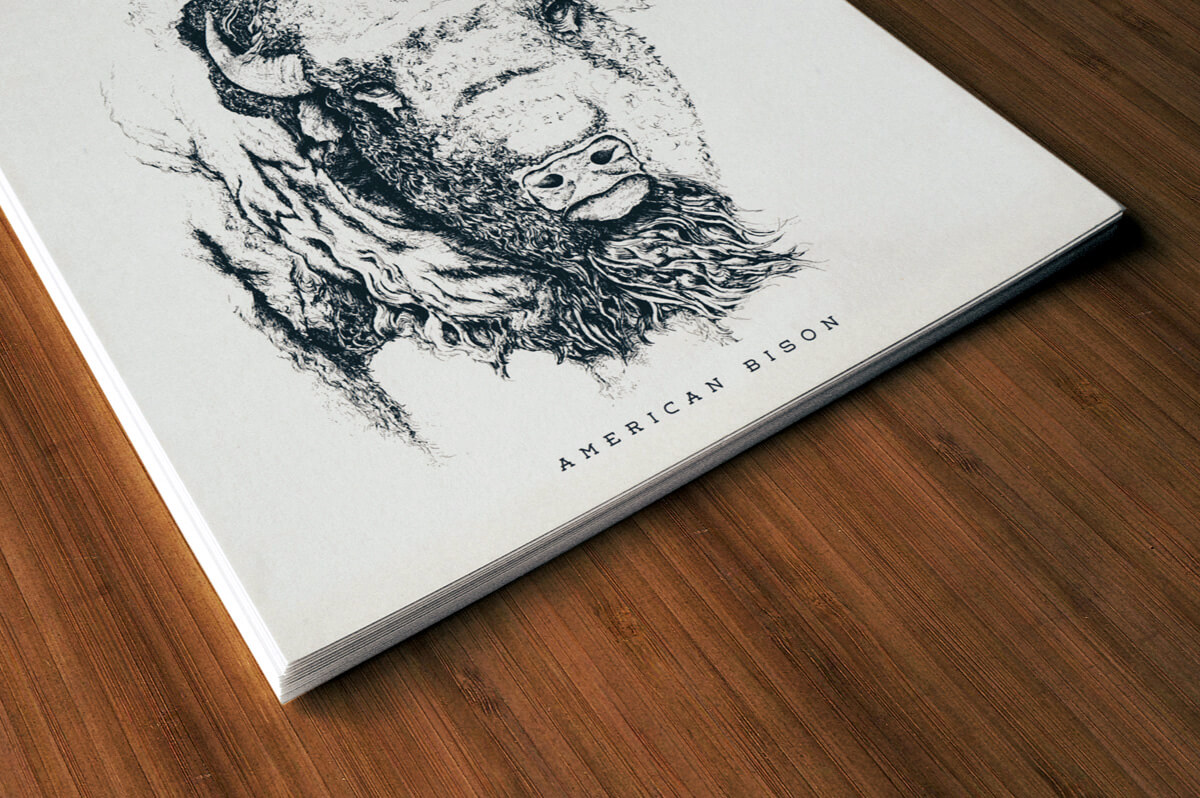 Stack of posters designed with the american bison illustration on them.