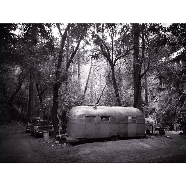 Found an airstream in the forest.