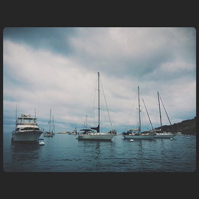 Hello, Catalina.