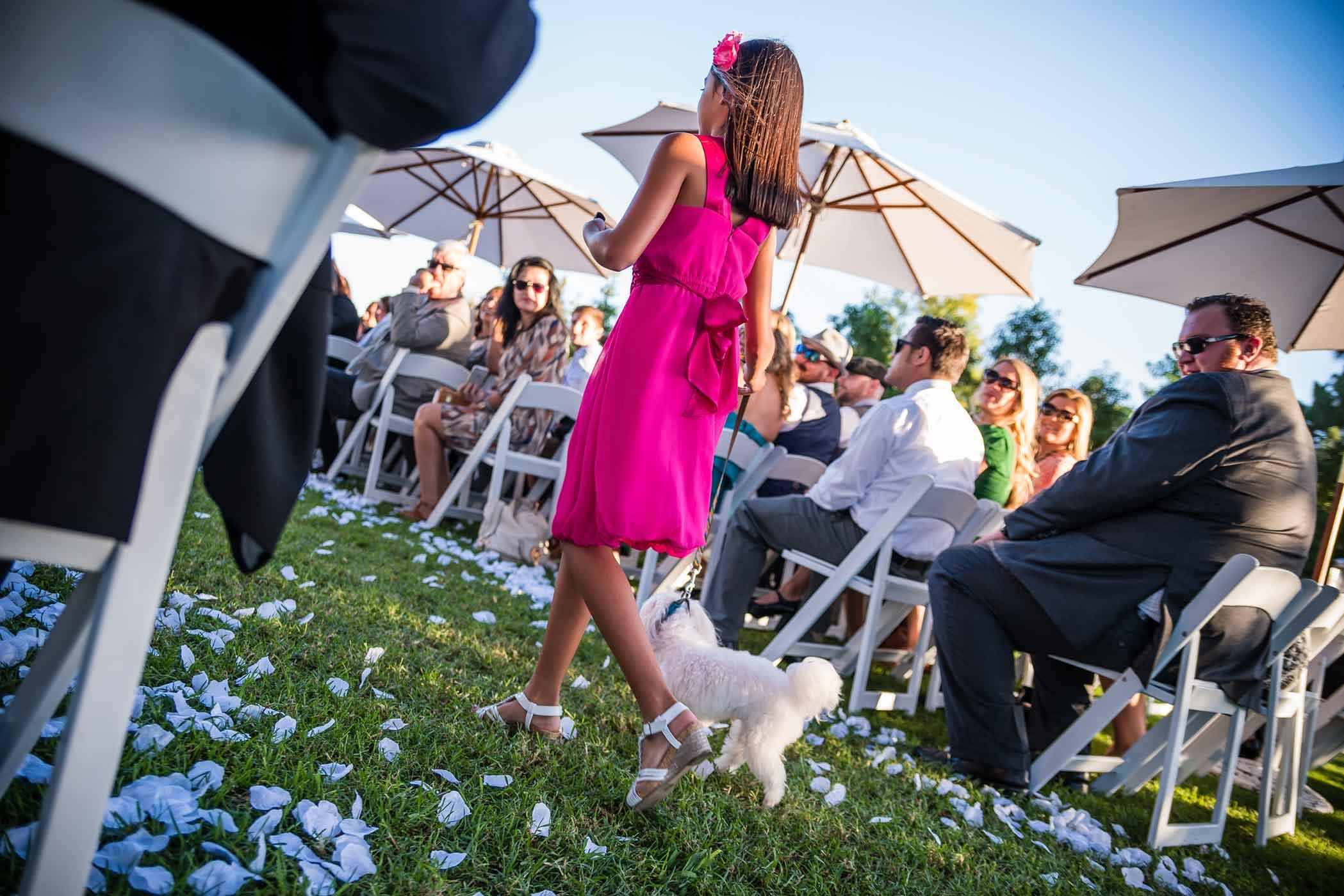 smlNahal-+-Joe-Wedding---Aug-2015-86.jpg