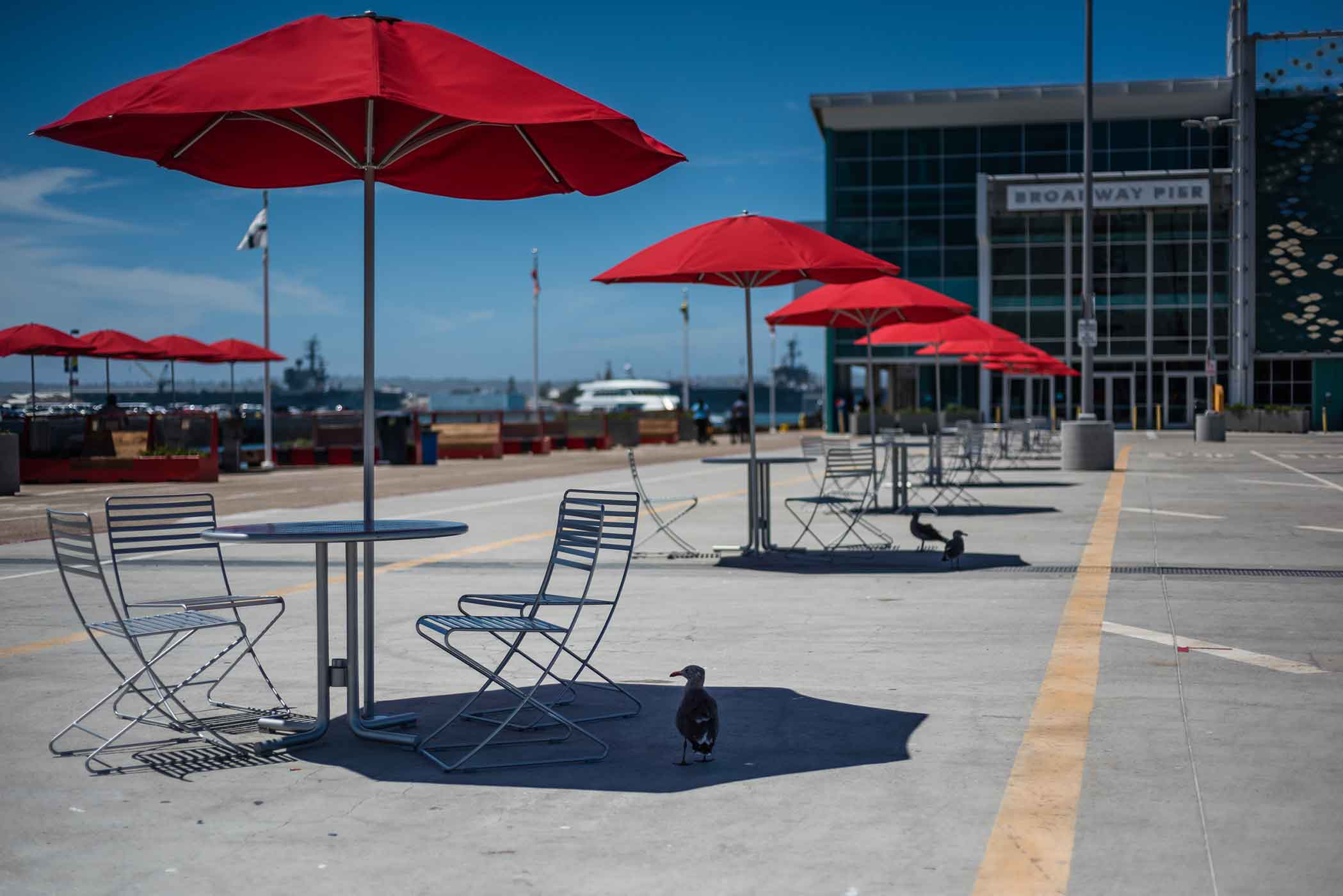 smlSan-Diego-Vacation---August-2015-103.jpg