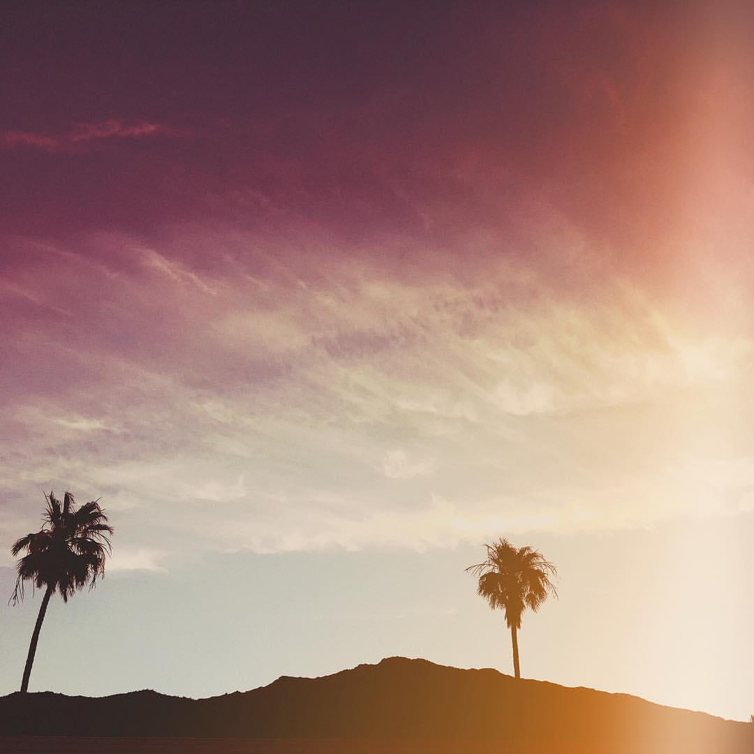 when-you-got-to-go-on-a-micro-vacation-for-work-purposes-man-i-love-palmsprings-126366---gorgeous-palms-sunset-adventure-wanderlust-desert-desertvibes-clouds-silhouette----acehotel-acehotelpalmsprings_26874420303_o.jpg