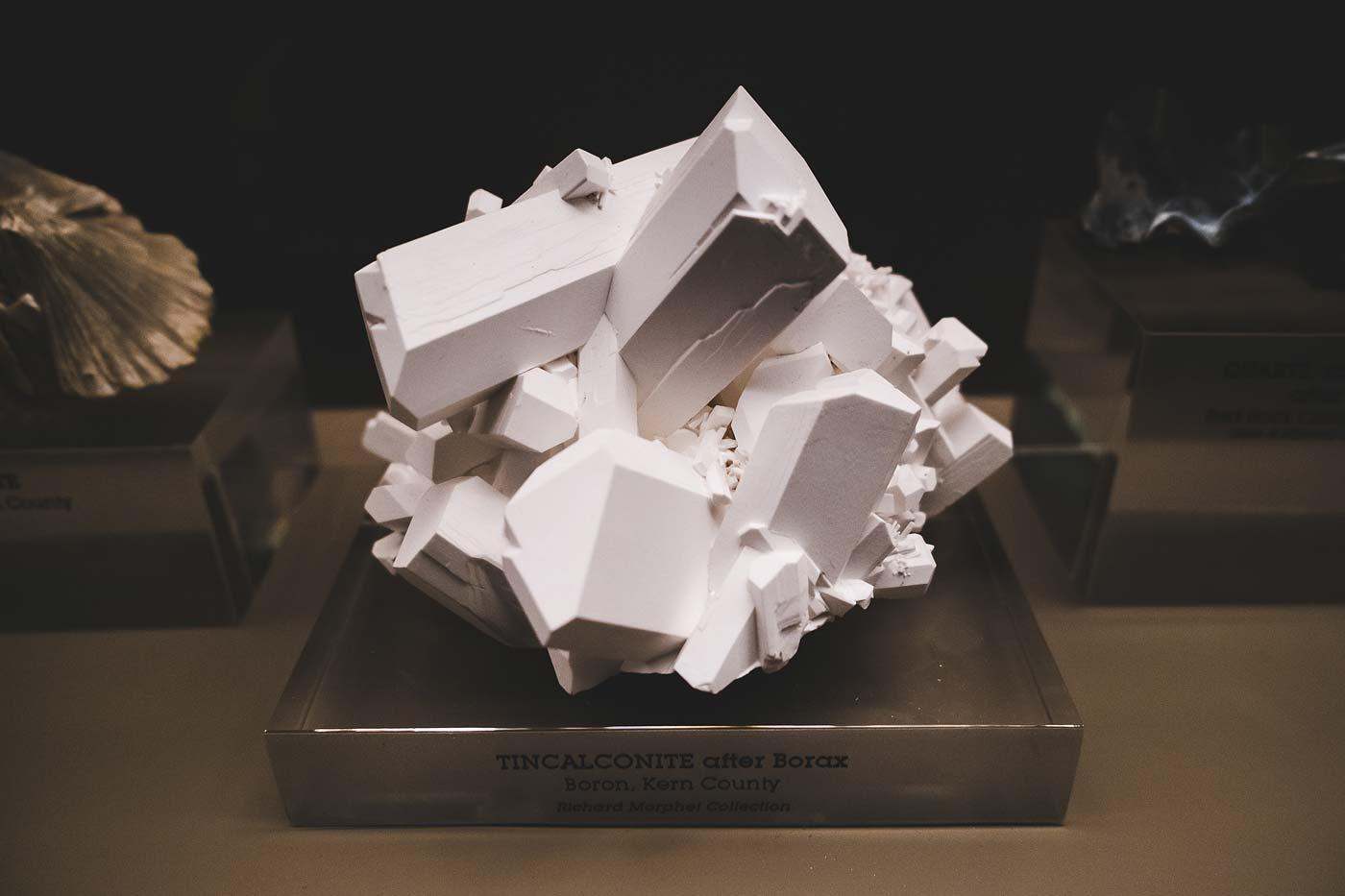 sNatural-History-Museum---Feb-2017-1.jpg