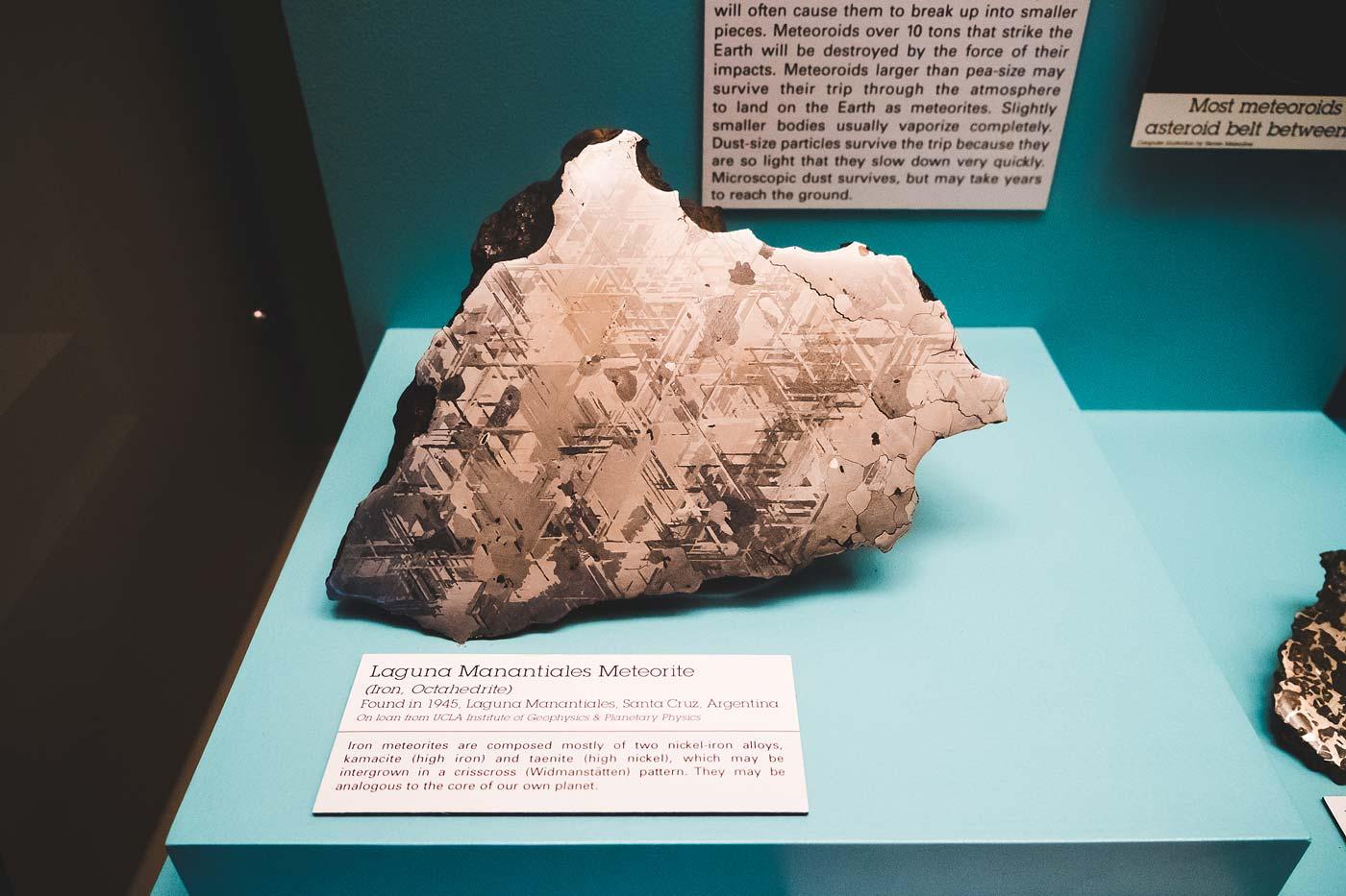 sNatural-History-Museum---Feb-2017-8.jpg