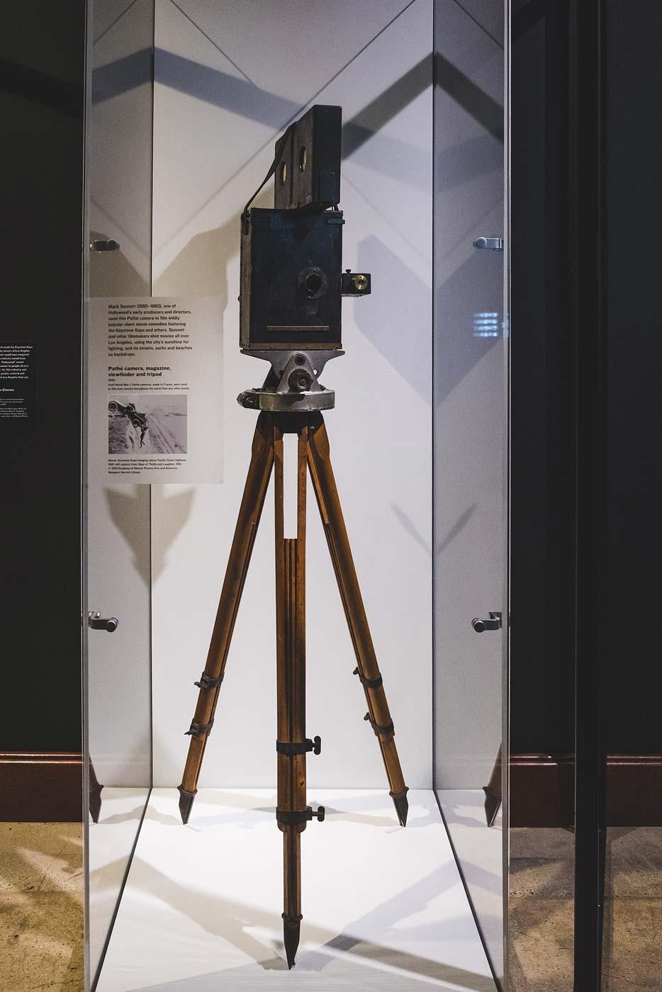 sNatural-History-Museum---Feb-2017-39.jpg