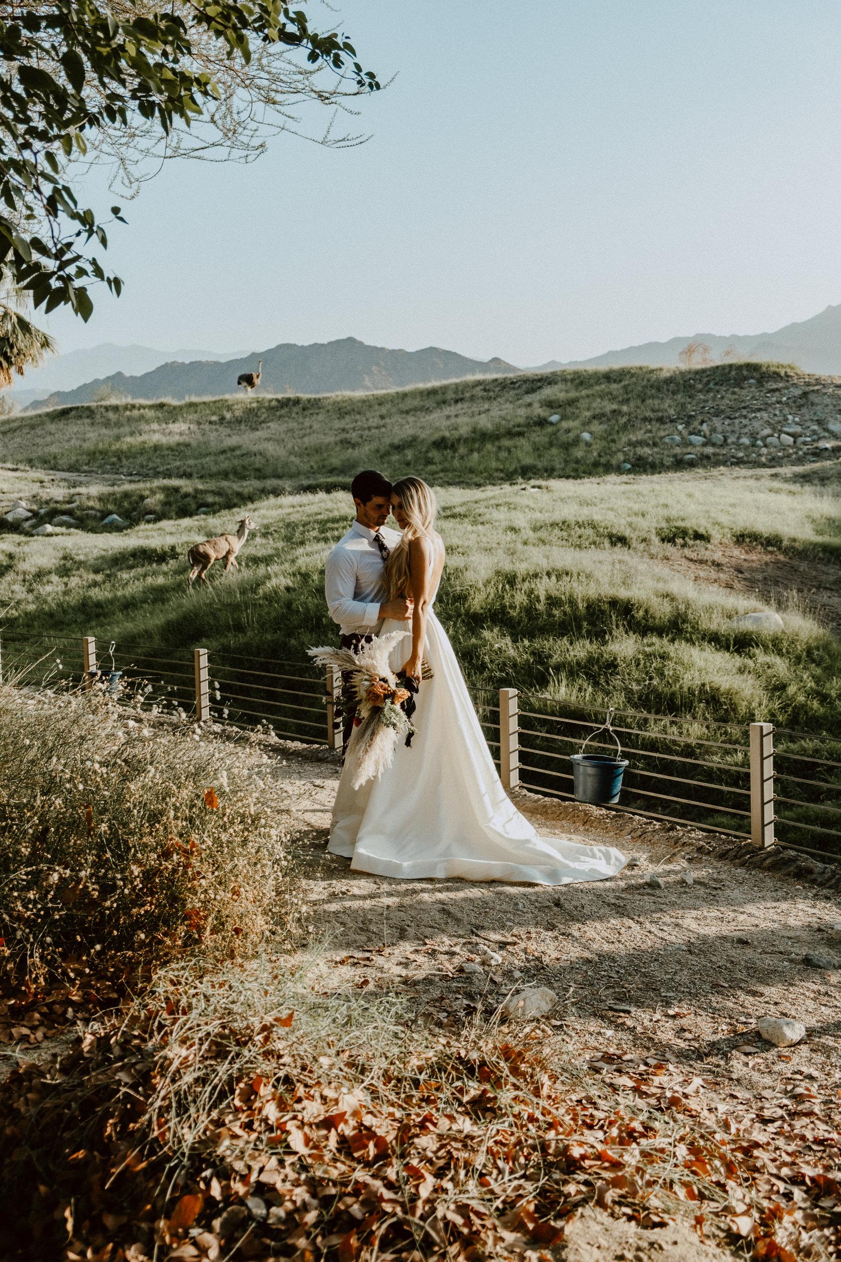 sChelsie + Chris - The Desert Shootout Wedding Romantics at The Living Desert-14.jpg