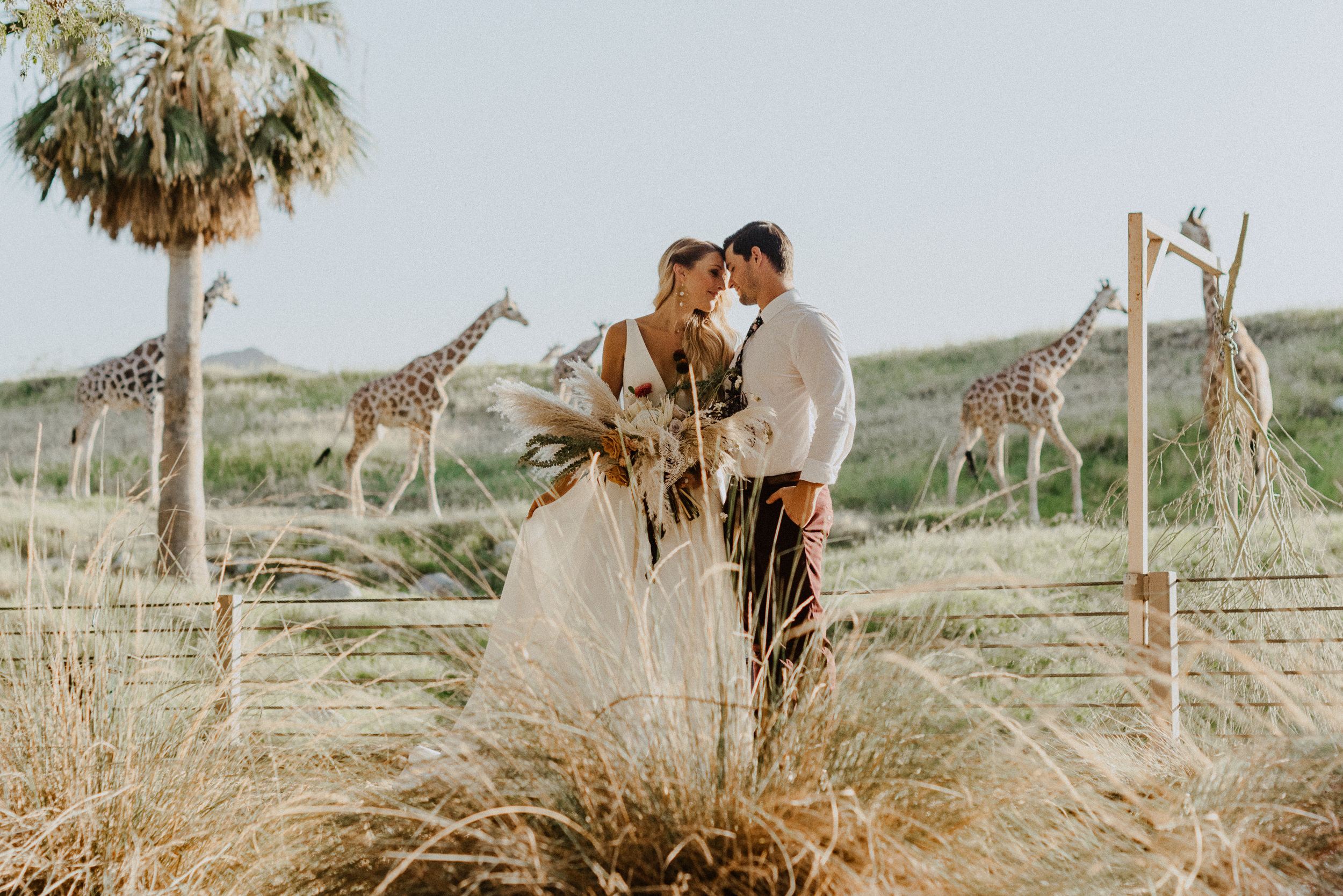 sChelsie + Chris - The Desert Shootout Wedding Romantics at The Living Desert-70.jpg
