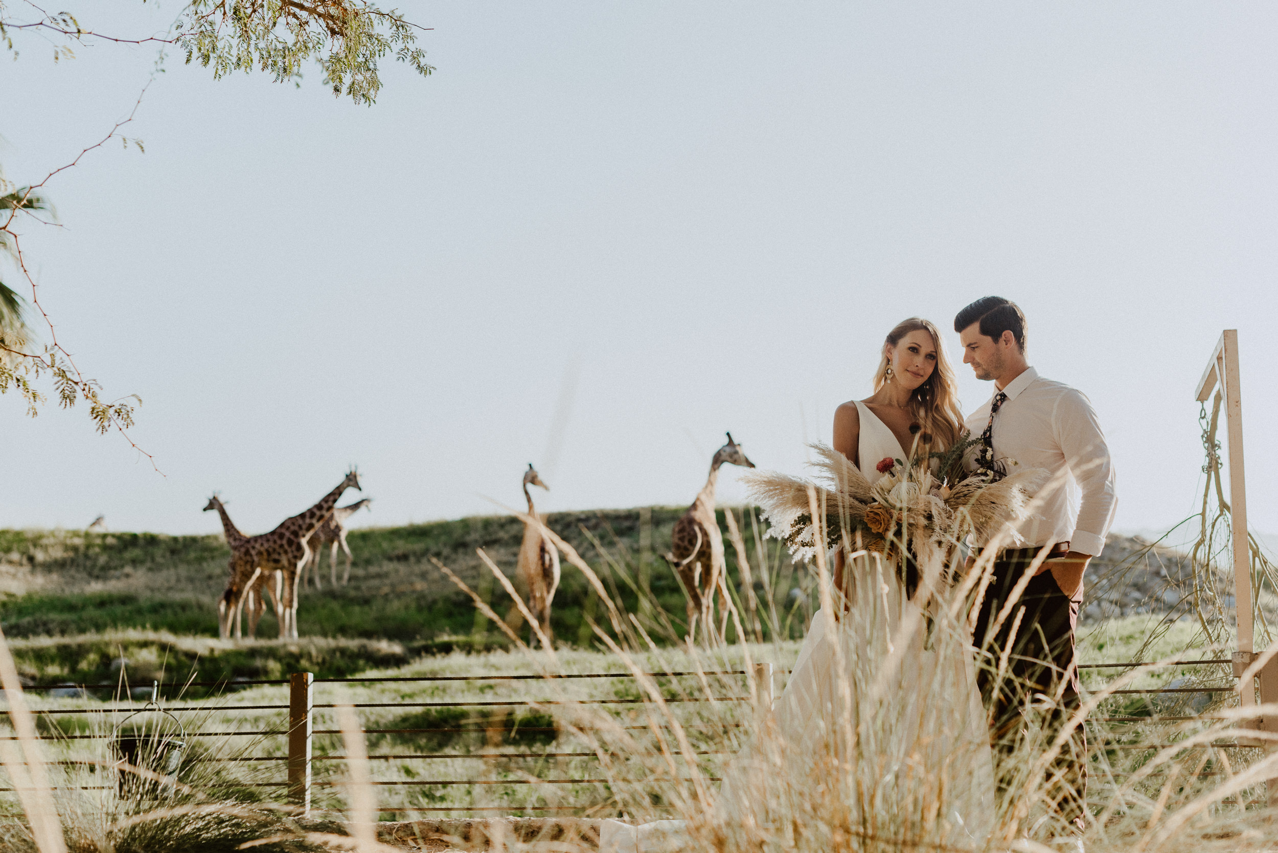 sChelsie + Chris - The Desert Shootout Wedding Romantics at The Living Desert-71.jpg