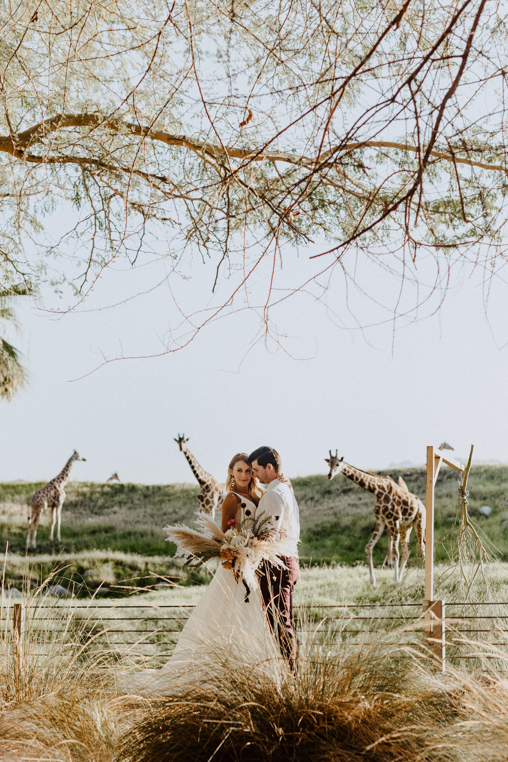 sChelsie + Chris - The Desert Shootout Wedding Romantics at The Living Desert-78.jpg