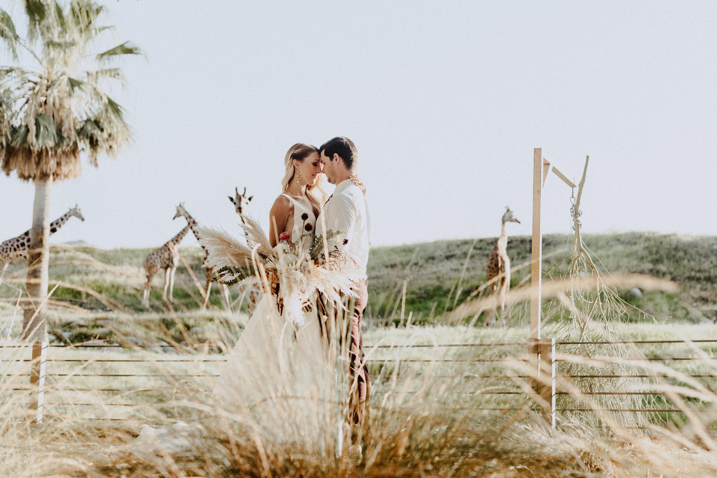 sChelsie + Chris - The Desert Shootout Wedding Romantics at The Living Desert-82.jpg