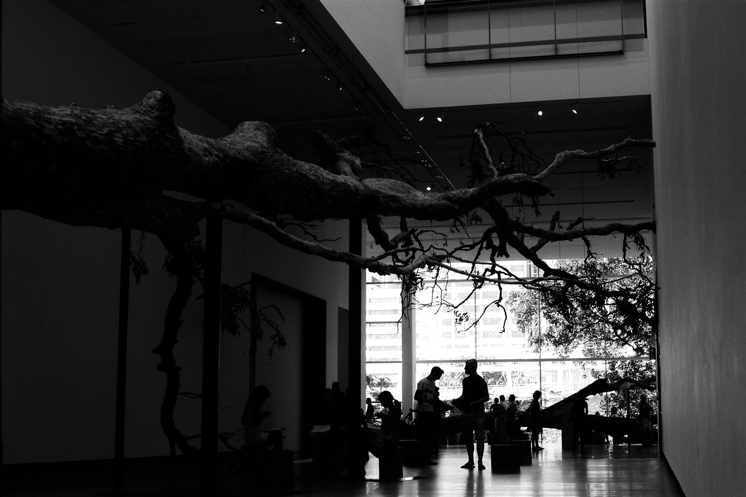 """This display, one of the main exhibits on currently. """"Cai Guo-Qiang: Falling Back to Earth"""""""