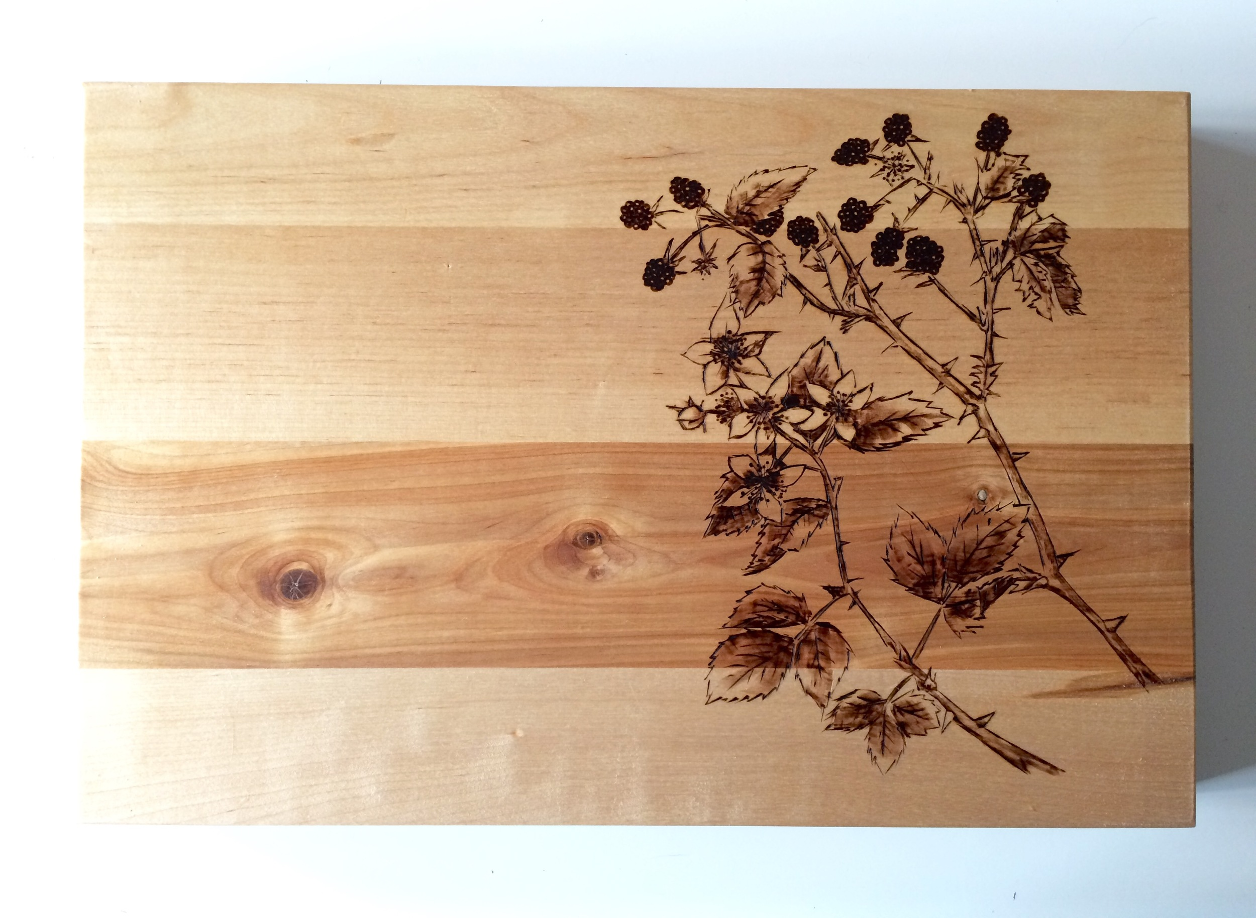 Pyrography blackberries