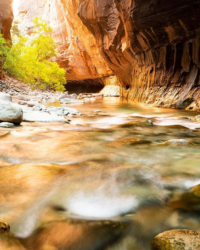 Thinking back on the Narrows in Zion NP. First into the river that day to get pristine views.