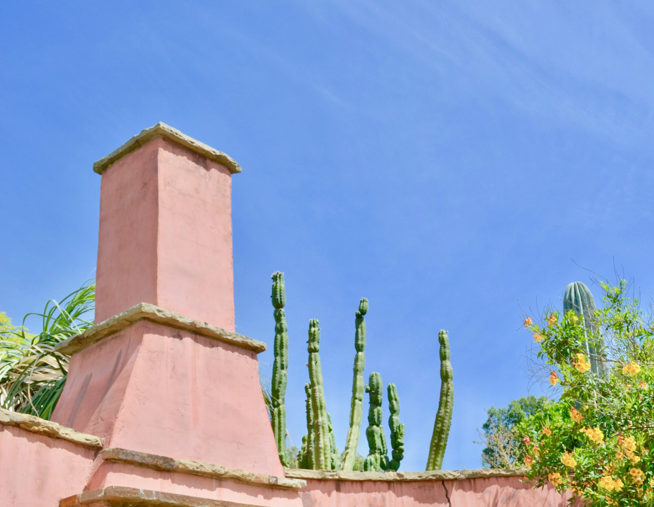arboreteum skyline.jpeg