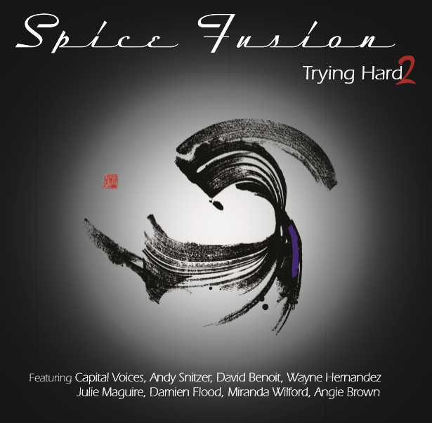 Spice Fusion Trying Hard 2 album cover