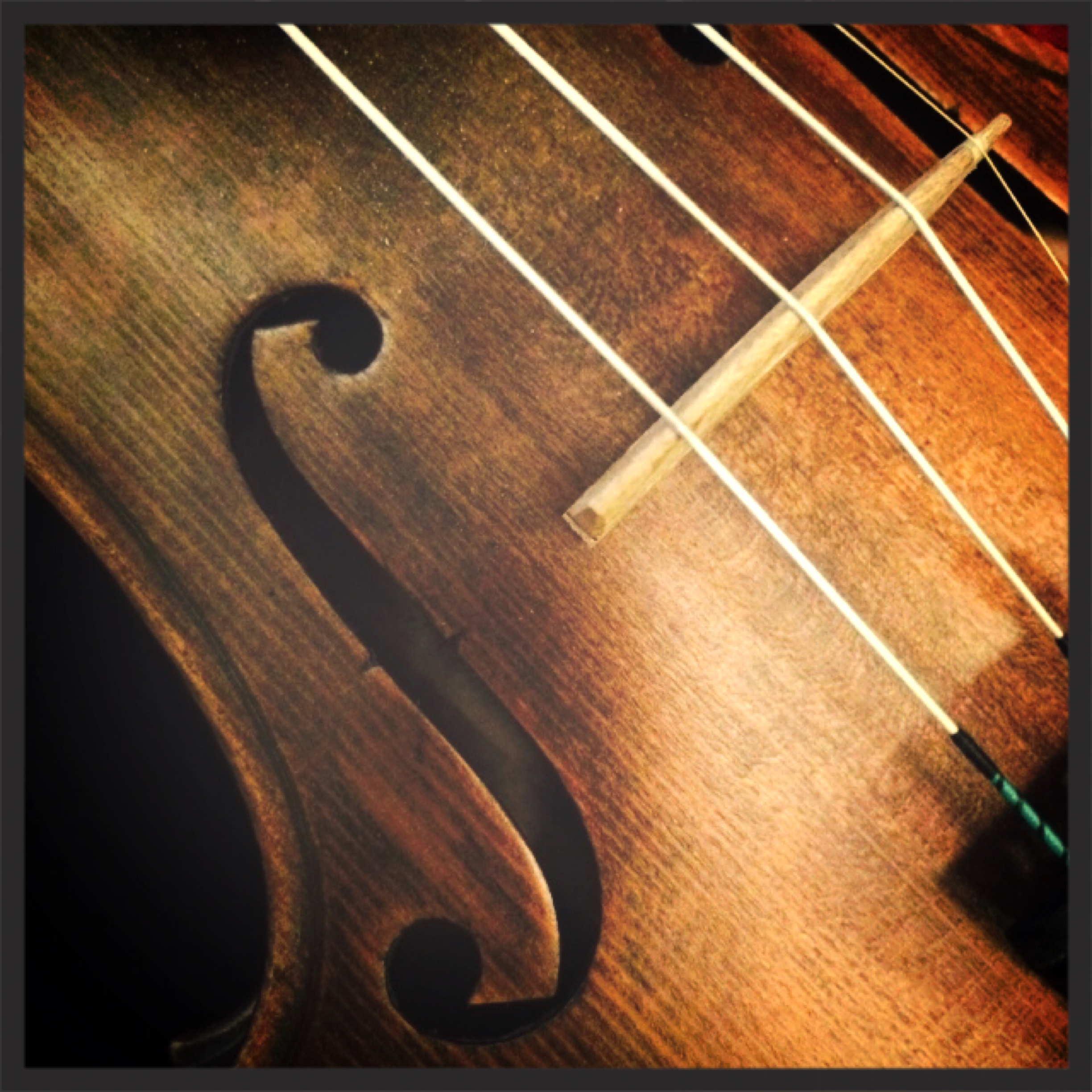 My old violin, which has been in my family for years.
