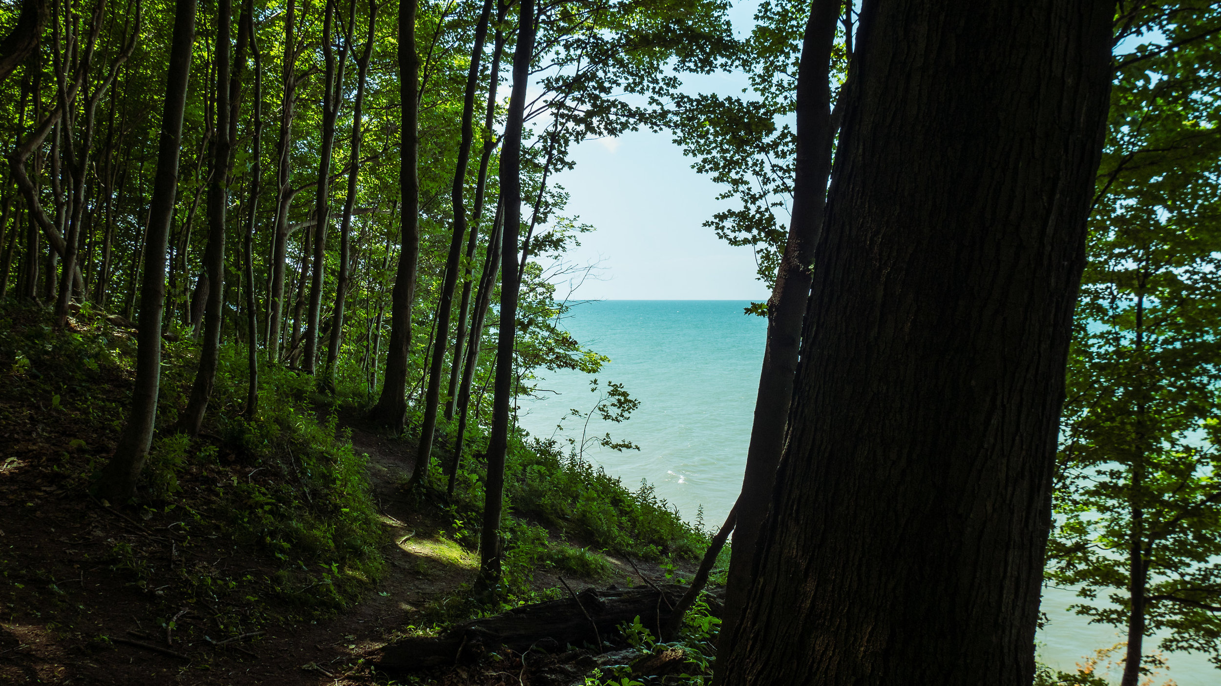 Nature_Diary_Erie_Bluffs-2.jpg