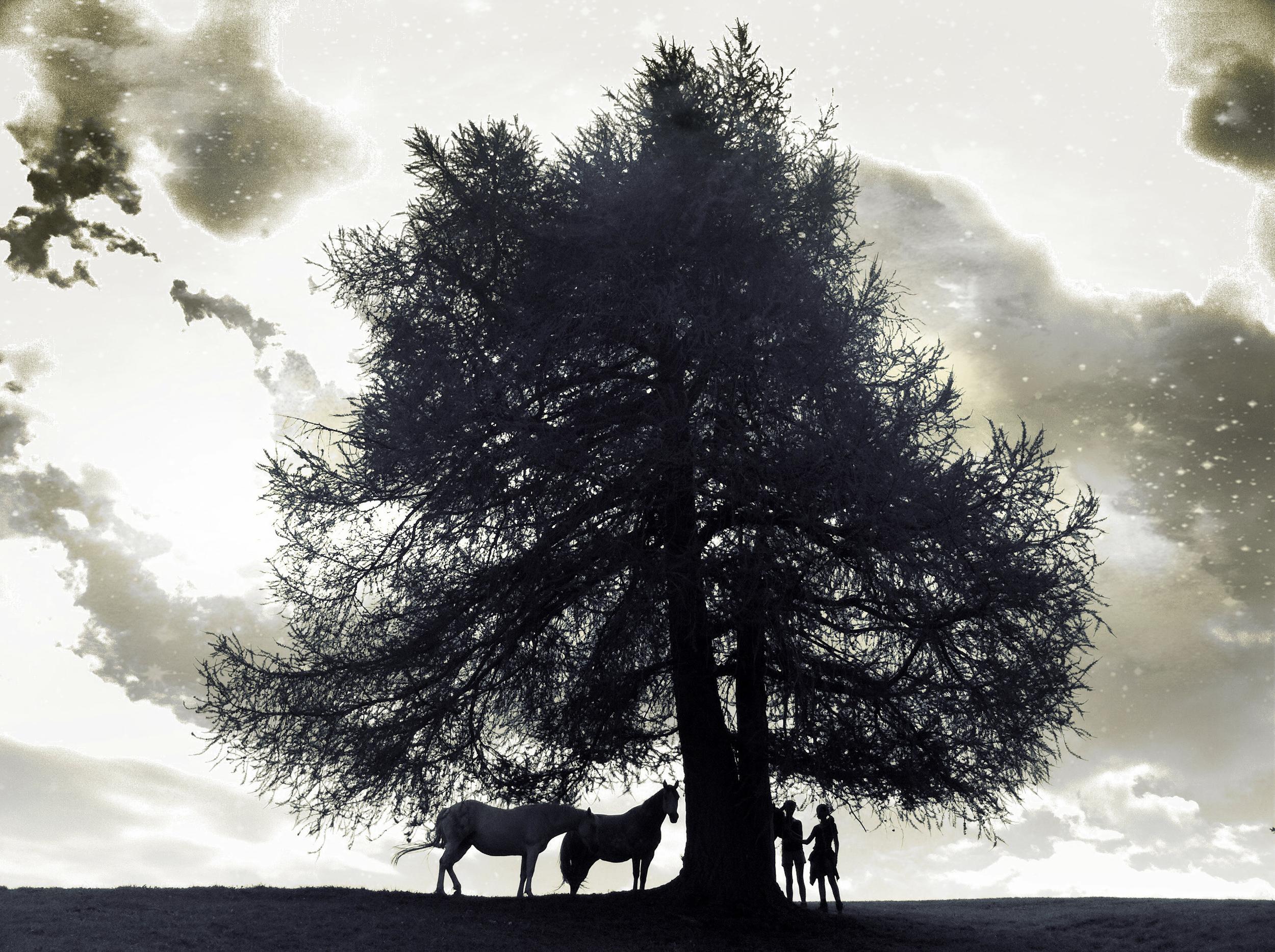Girls&Horses.jpg